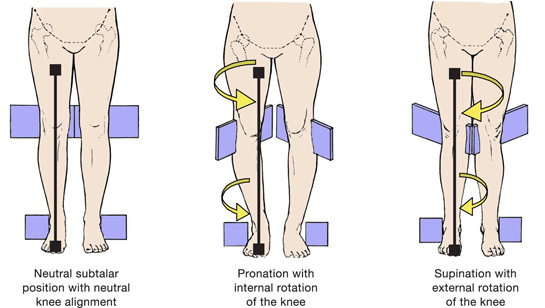Fitness Gone Rogue   Mobility The Importance At Three Major Joints: Ankle  Mobility and Alignment
